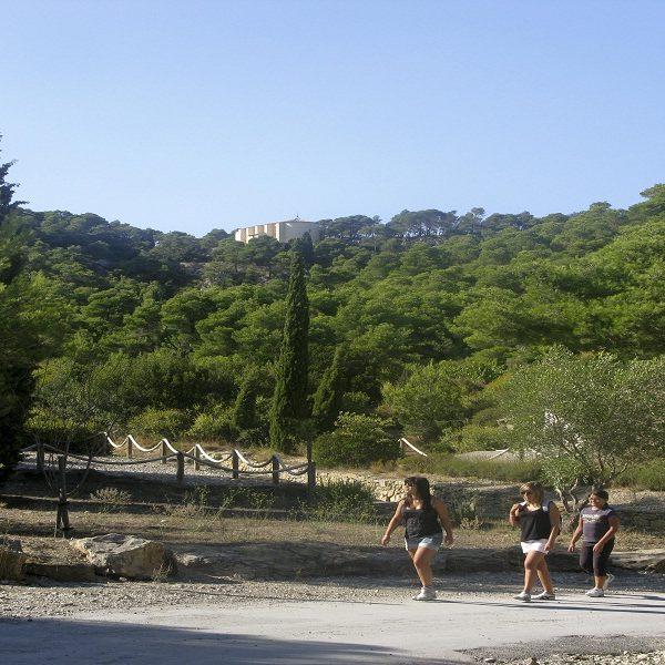 Parc Naturel Régional de la Narbonnaise en Méditerranée : campez au Mas des Lavandes